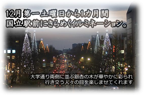 12月第一土曜日から1ヵ月間、国立駅前にきらめくイルミネーション。大学通り両側に並ぶ銀杏の木が華やかに彩られ、行き交う人々の目を楽しませてくれます。