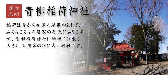青柳稲荷神社 稲荷は昔から谷保の屋敷神として、あちらこちらの農家の庭先にありますが、青柳稲荷神社は地域では最も大きく、天満宮の次に古い神社です。