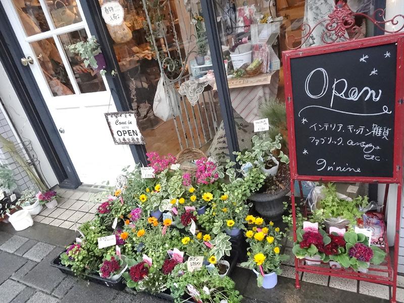 お花と鉢植えは週一回、市場に行って仕入れています。